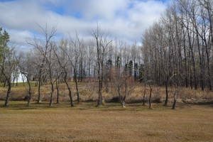 Willowdale Road - Building Lot 4