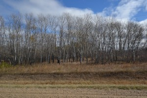 Willowdale Road - Building Lot 5/6